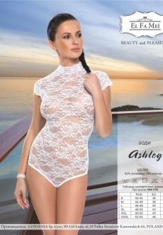 1491 ashley